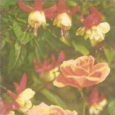 Postales: POSTAL A COLOR ALEMANIA TEMA FLORES ESCRITA 1985. Lote 37182582