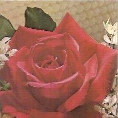 Postales: POSTAL A COLOR C Y Z6142 A ESCRITA 1988 TEMA FLORES ROSAS. Lote 37182593