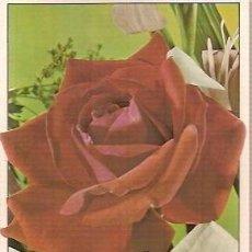 Postales: POSTAL A COLOR C Y Z 6406 B ESCRITA 1994 TEMA FLORES. Lote 37182640