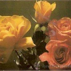 Postales: POSTAL A COLOR SERIE 1051 3 FLORES ROSAS EUROCROMO SL. Lote 37185480