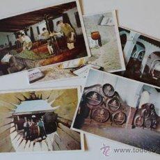 Postales: LOTE DE 5 POSTALES. GONZÁLEZ BYASS. FOTOGRAFÍA SERRA. LA VENDIMIA Y EL VINO.. Lote 38804744