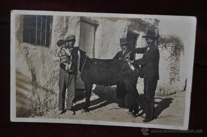 FOTO POSTAL DE PRINCIPIOS DE SIGLO XX. PERSONAJES TIPICOS. VISITA DEL VETERINARIO. SIN CIRCULAR (Postales - Varios)