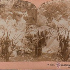 Postales: POSTAL STEREOSCOPIC. TELLING FORTUNES BY TEA LEAVES. Nº2291. GRIFFITH.. Lote 44996024