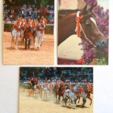 Postales: POSTAL EL CABALLO EN ANDALUCIA M. Y. M. FOTO: ALEJANDRO MALDONADO Y ENRIQUE YSASI. 3 POSTALES.. Lote 45140062