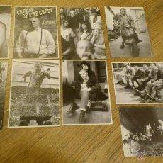 Postales: LOTE DE POSTALES SOBRE SKINHEADS CREAM OF THE CROP PUNK OI! SKA ROCKSTEADY REGGAE . Lote 46412380