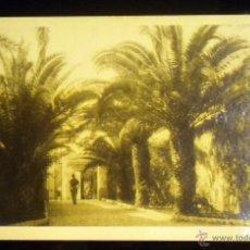 Postales: FOTO POSTAL POST CARD PHOTOGRAPHY ANTIGUA. Lote 49140157