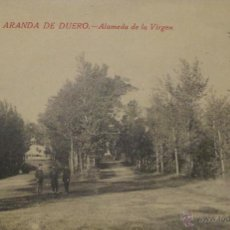 Postales: TARJETA POSTAL ARANDA DEL DUERO, ALAMEDA DE LA VIRGEN. Lote 50361123