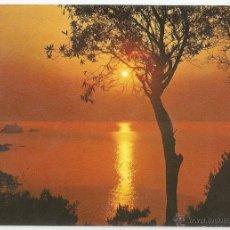 Postales: POSTAL DE FOTOGRAFIA PUESTA DEL SOL - SIN CIRCULAR. Lote 50570933