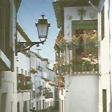 Postales: POSTAL 54922: CALLE TIPICA. Lote 56213435