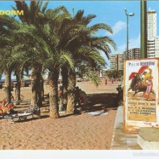 Postales: POSTAL 049228 : BENIDORM (ESPAA). Lote 57065661