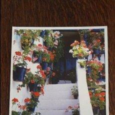 Postales: POSTAL , POSTALES , TARJETA , TARJETAS , FOTO , FOTOGRAFIAS , PANORAMICAS , TURISMO , SOUVENIRS. Lote 61895100