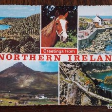Postales: POSTAL , POSTALES , TARJETA , TARJETAS , FOTO , FOTOGRAFIAS , PANORAMICAS , TURISMO , SOUVENIRS. Lote 63633947