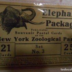 Postales: EXCEPCIONAL LOTE DE POSTALES DEL ZOOLOGICO DE NUEVA YORK - PPOS DEL SIGLO XX -. Lote 64870167