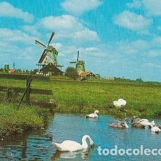 Postales: POSTAL B0333: TYPICAL DUTCH LANDSCAPE. Lote 95675587