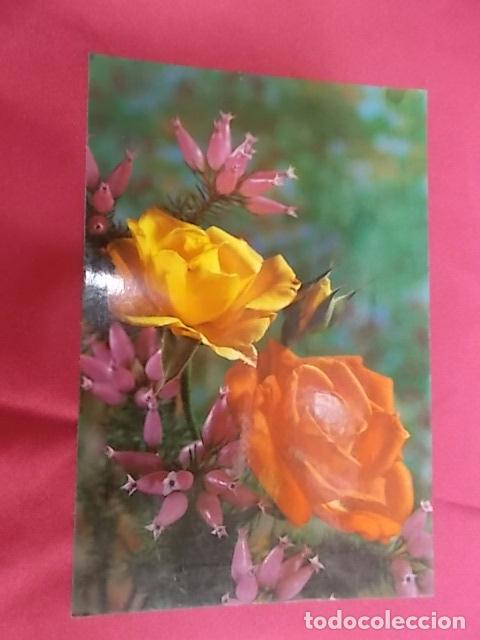Tarjeta Postal Bonitas Rosas C Y Z 7803 D Comprar En