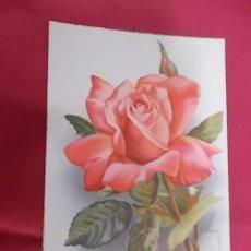 Postales: TARJETA POSTAL. BONITA ROSAS. C Y Z. 527/B. VIVES.. Lote 101198703
