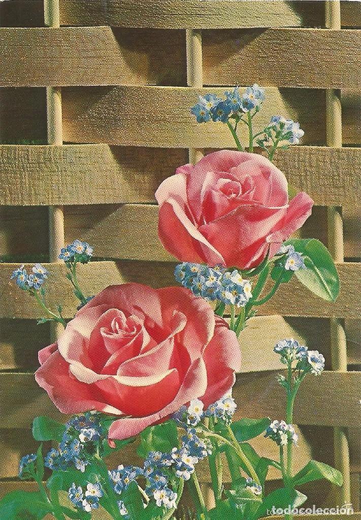 Pw919 Postal Bonitas Rosas Comprar En Todocoleccion 108107711