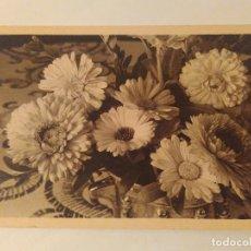 Postales: ANTIGUA POSTAL. RECREO DE LOS OJOS. E. BEHRMANN. SIN USAR. Lote 110203531