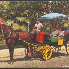 Postales: 156 - MALAGA .- TIPICO COCHE DE CABALLOS. Lote 114982379