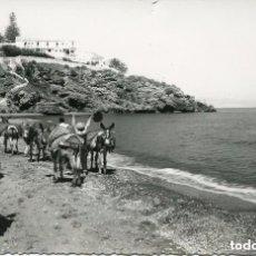 Postales: TORREMOLINOS-PLAYA DE LA CARIHUELA-BURROS DE TRANSPORTE-FOTOGRÁFICA-RARA-1958. Lote 116981831