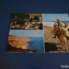Postales: POSTAL SIN CIRCULAR - CAMPING DON CACTUS Nº3 - CALAHONDA - GRANADA. Lote 118581247