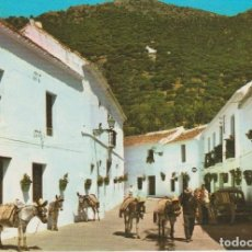 Postales: (2003) MIJAS. CALLE TIPICA. Lote 128655819