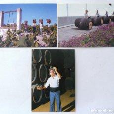 Postales: POSTAL ANDALUCIA M. Y M. BODEGAS. FOTO EDUARDO PEREIRAS.. Lote 130795340