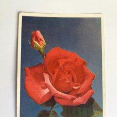 Postales: TARJETA POSTAL -1958 FLORES - ROSA - FRANCIA . Lote 135194454