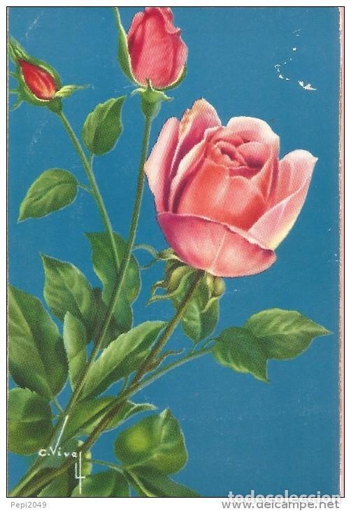 E146 Postal Bonitas Rosas