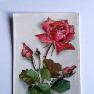 1956 rosa con relieve