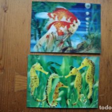 Postales: 2 POSTALES FAUNA TRES DIMENSIONES . Lote 146544142