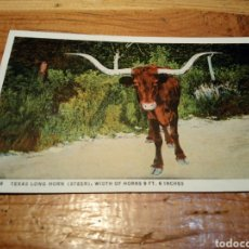 Postales: POST CARD. Lote 152585657