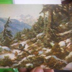 Postales: POSTAL EINE KLASSE FUR SICH... CONTINENTAL FARMER REIFEN 1963. Lote 170378032