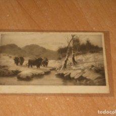 Postales: POSTAL DE TOROS. Lote 172356339