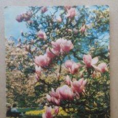 Postales: POSTAL ISV SORT 71 ALEMANIA. TROQUELADA, NUEVA. Lote 182364421