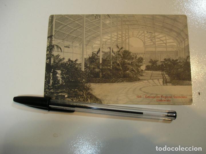 Postales: LOTE 20 ANTIGUAS TARJETA POSTAL EXPOSICION REGIONAL VALENCIANA FOTOS TODAS POSTALES (19) - Foto 20 - 183959092
