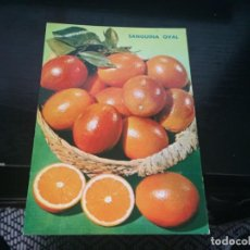 Postales: POSTAL DE NARANJAS - LA DE LA FOTO VER TODAS MIS POSTALES. Lote 194275671