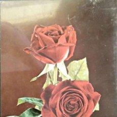 Postales: FLOR (111) ROSAS ROJAS. NUEVA. COLOR. VER FOTO. Lote 194300020