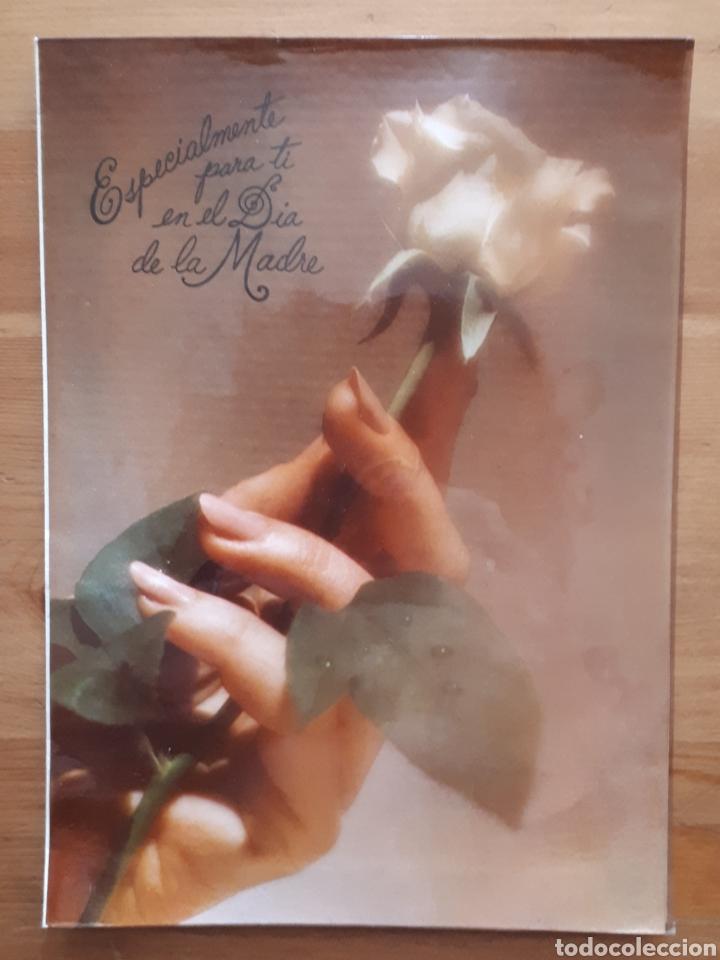 Postales: Lote 4 postales felicitación oso relieves, animales botes pintura, día de la madre, Im so blue - Foto 8 - 194536313
