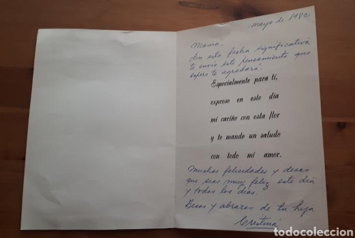 Postales: Lote 4 postales felicitación oso relieves, animales botes pintura, día de la madre, Im so blue - Foto 9 - 194536313