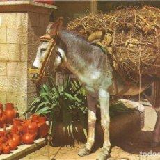 Postales: [POSTAL FOLCKLÓRICA] BURRITO CON BOTIJOS (SIN CIRCULAR). Lote 195116383