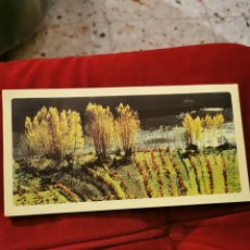 Postales: ANTIGUA POSTAL. Lote 195145277