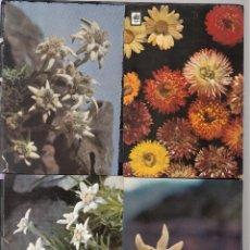 Postales: 4 POSTALES DIFERENTES DE FLORES SILVESTRES. Lote 195307590