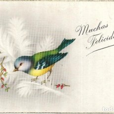 Postales: == PV1471 - POSTAL - MUCHAS FELICIDADES. Lote 198843505