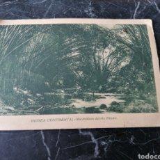Postales: GUINEA CONTINENTAL. NACIMIENTO DEL RIO EKUKO. PUBLICACIONES PATRIÓTICAS.. Lote 207765718
