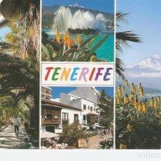Postales: POSTAL 030484 : TENERIFE. Lote 211447002