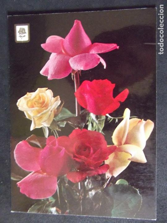 FLORES-DF1-ESCRITA-FLOWERS-FLEURS-FIOR. (Postales - Varios)