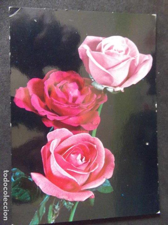 FLORES-DF1-ESCRITA-FLOWERS-FLEURS-FIOR (Postales - Varios)
