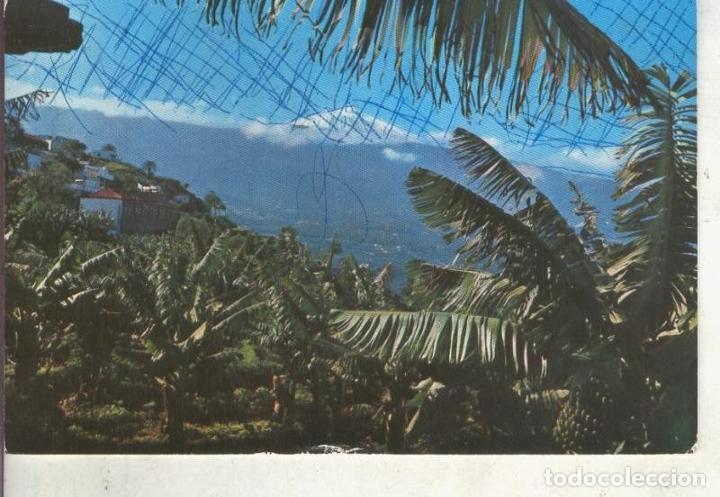 POSTAL 014679: VISTA DEL TEIDE DESDE EL VALLE DE LA OROTAVA (Postales - Varios)