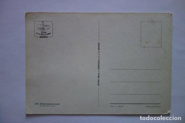 Postales: Tarjeta Postal Zoo de la Casa de Campo Madrid Petizos caballitos enanos postcard - Foto 2 - 228200905